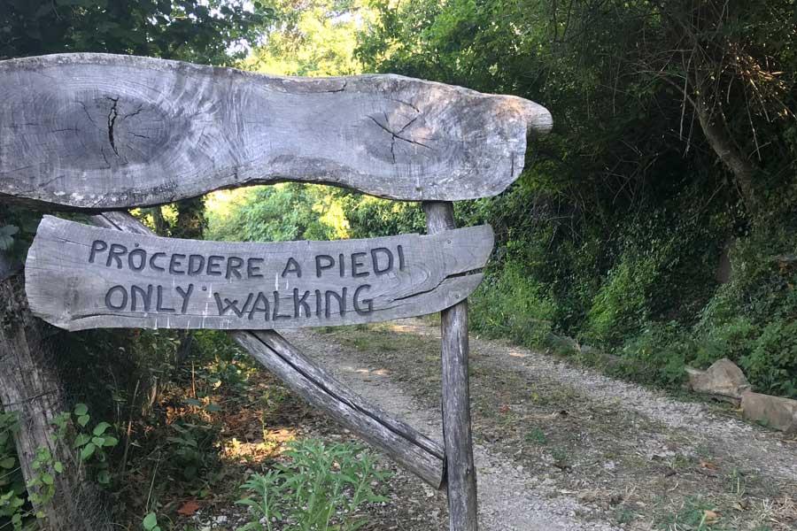 Accoglienza agricampeggio in Maremma Toscana a Tatti